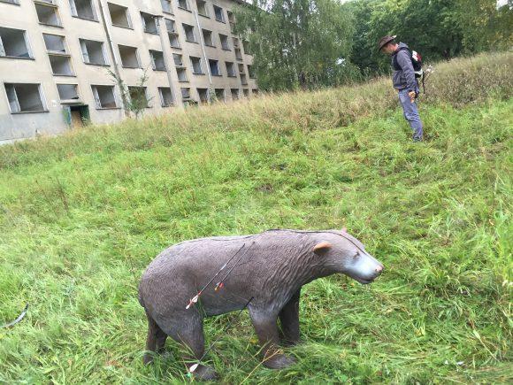 Bogensport in Elstal: Wolfsjagd Reloaded