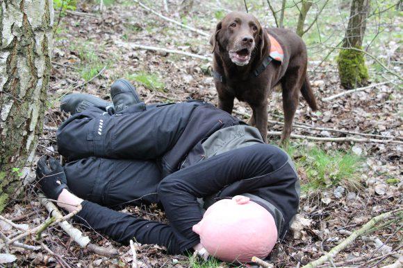 Dallgow-Döberitz: Arbeit mit den Rettungshunden
