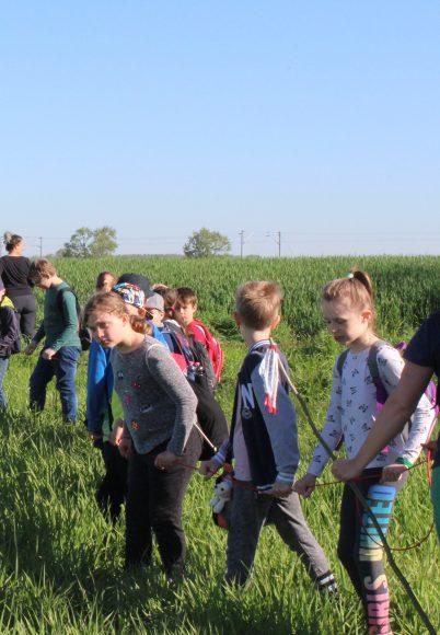 Jungwildsuche bei Lietzow 2018 – Die ersten Rehkitze sind da