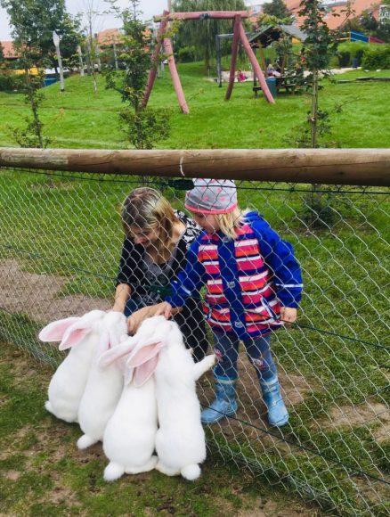 Ladys-Cup im Holzrücken am Samstag zum Herbstfest im Erlebnispark Paaren