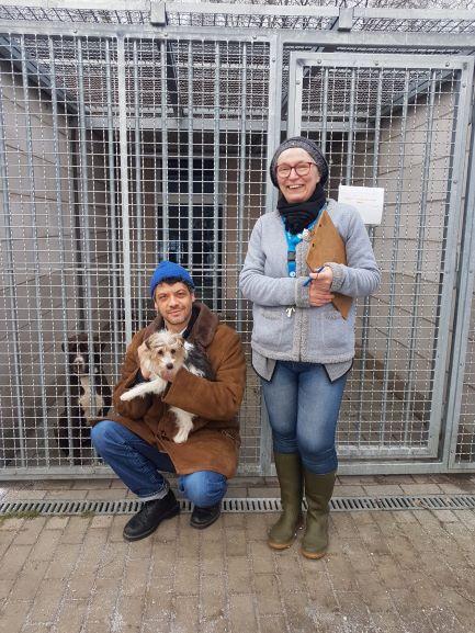 Falkensee: Kleines Tierheim groß in Szene gesetzt