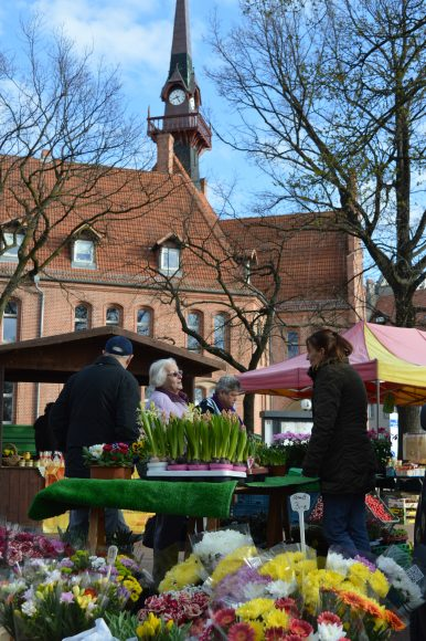 Start geglückt: Großer Besucherandrang beim 1. Nauener Frischemarkt