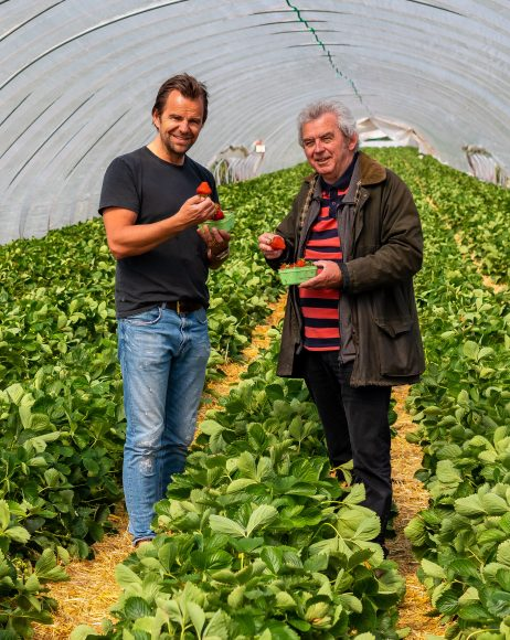 Wieder frische Früchte vom Feld: Karls eröffnet Erdbeersaison in Berlin