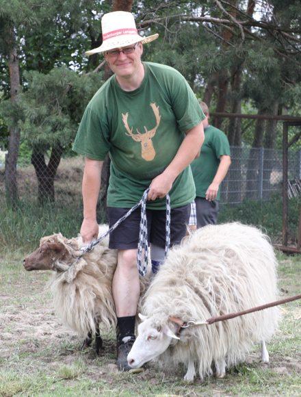 Schafe scheren: Der Damwildhof Kraatz nahm an der Brandenburger Landpartie teil!