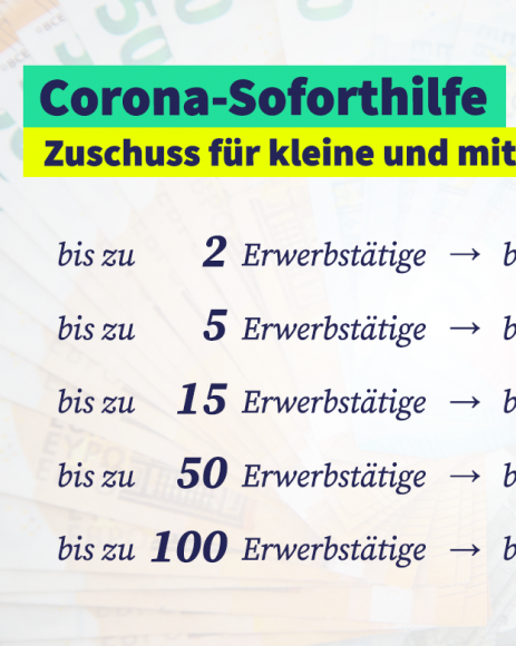Corona-Folgen: Land Brandenburg legt Soforthilfeprogramm für kleine und mittlere Unternehmen sowie Freiberufler auf