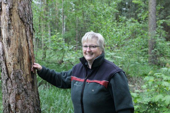 Brieselang: Alle 4 Meter Eichen – Im Bredower Forst werden Eichen nachgepflanzt!