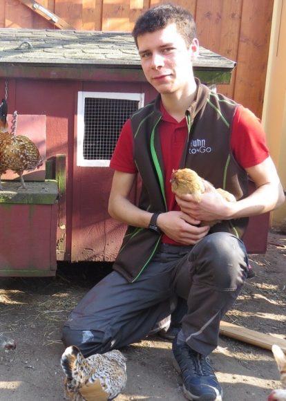 Huhn to go:  Diese Hühner kann man mieten – und sie kommen nach Falkensee!