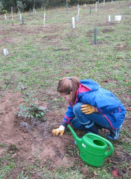 Gießaktion der Baumschutzgruppe Finkenkrug und des Jugendforums Falkensee im Kinderstadtwald