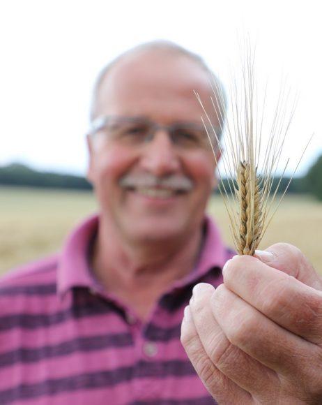 Durchschnitt erwartet: Havelländer Landwirte geben eine Ernteprognose ab!