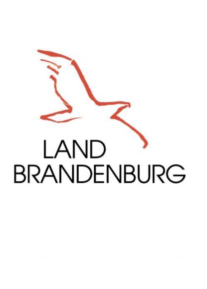 Perspektiven zur Bewältigung der Corona-Pandemie in Brandenburg