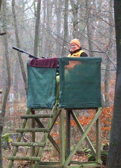 Drückjagd im Brieselanger Forst: Mit den Jägern unterwegs!
