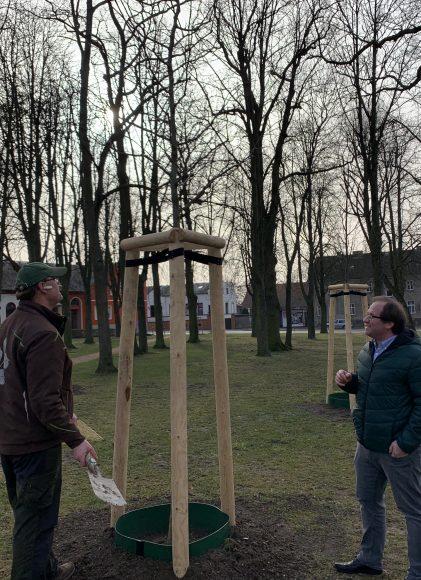 Baumpflanzungen im Stadtgebiet Nauen